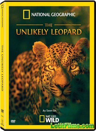 Скачать с letitbit  National Geographic: Необычный леопард / National Geographic: The Unlikely Leopard ( 2012 ) HDTVRip