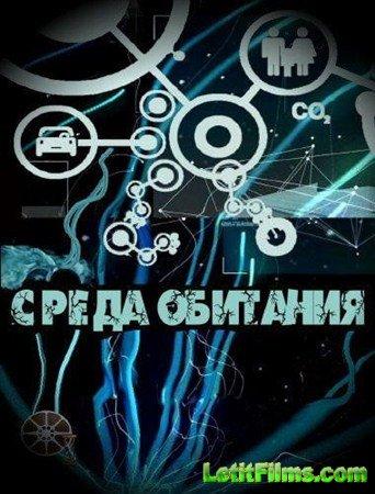 Скачать с letitbit  Среда обитания / Чтобы ложка стояла (09.02.2013) SATRip