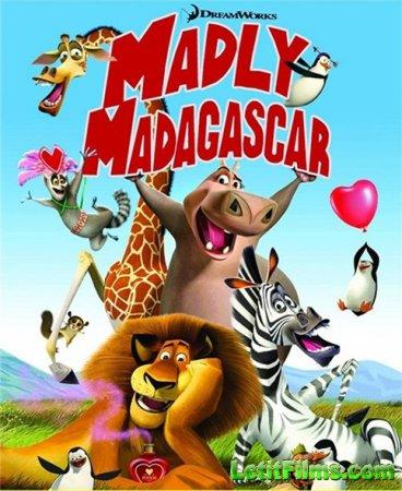 Скачать мультфильм Безумный Мадагаскар (2013)