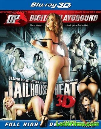 Скачать с letitbit Jailhouse Heat 3D [2011] BDRip 3D