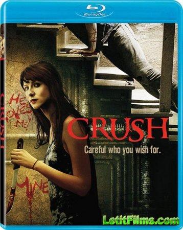 Скачать с letitbit Страсть / Crush (2013)