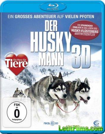 Скачать Человек хаски / The Huskyman (2011)