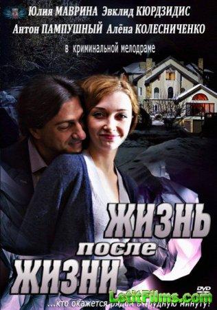 Скачать с letitbit  Жизнь после жизни /Жизнь взаймы (2013)