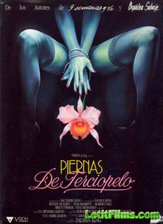 Скачать фильм Дикая орхидея 2. Два оттенка грусти [1991]