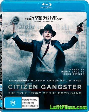 Скачать с letitbit Гражданин гангстер (2011)