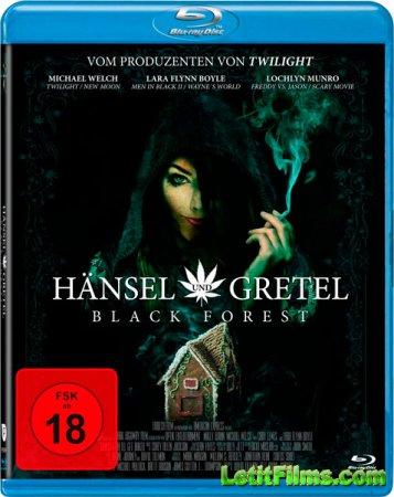Скачать фильм Темный лес: Ганс, Грета и 420-я ведьма (2013)