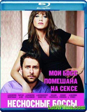 Скачать фильм Несносные боссы (2011)