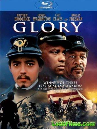 Скачать фильм Слава (Воинская доблесть) / Glory [1989]