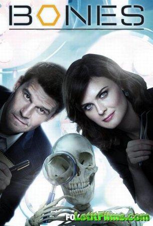 Скачать с letitbit  Кости / Bones - 9 сезон (2013)