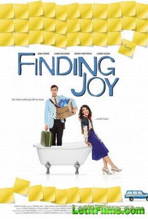 Скачать с letitbit  В поисках радости / Finding Joy (2013)