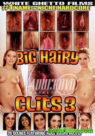 Скачать с letitbit Big Hairy Clits 3 (2013/DVDRip)