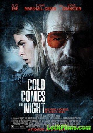 Скачать с letitbit Взгляд зимы / Cold Comes the Night (2013)