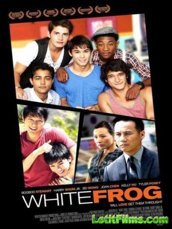 Скачать с letitbit Белая лягушка / White Frog (2012)