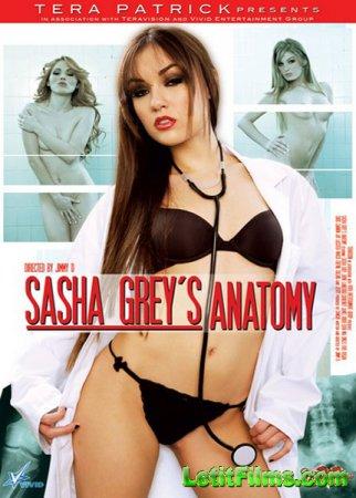 Скачать с letitbit Sasha Greys Anatomy (2008/DVDRip)