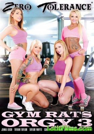 Скачать Оргия со вздорными гимнастками 3 / Gym Rats Orgy 3 [2014] DVDRip