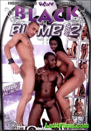 Скачать с letitbit Black Bi Me 2 (2007/DVDRip)