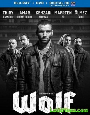 Скачать фильм Волк / Wolf (2013)