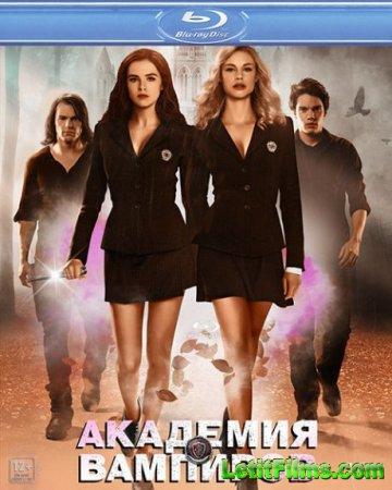 Скачать фильм Академия вампиров / Vampire Academy (2014)