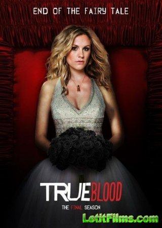 Скачать с letitbit Настоящая кровь / True Blood - 7 сезон (2014)