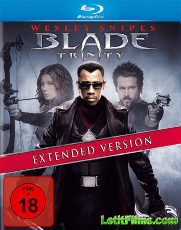 Скачать фильм Блэйд 3: Троица / Blade: Trinity (2004)
