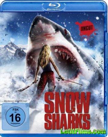 Скачать с letitbit Горные акулы (2013)