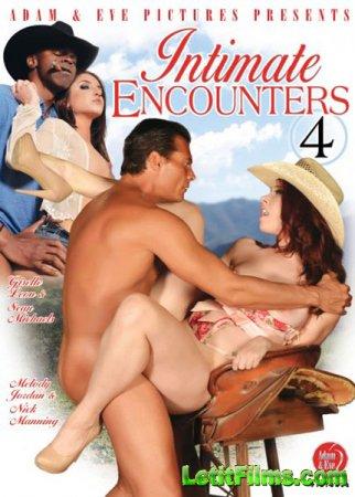 Скачать с letitbit Intimate Encounters 4 (2013/DVDRip)