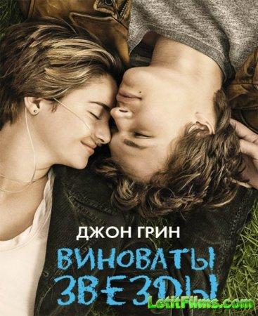 Скачать фильм Виноваты звезды (2014)