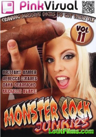 Скачать с letitbit Monster Cock Junkies 11 (2011) WEBRip-HD