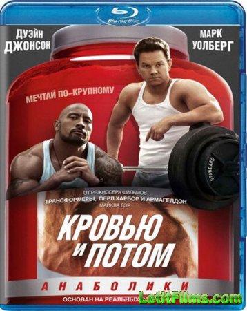 Скачать фильм  Кровью и потом: Анаболики / Pain & Gain (2013)