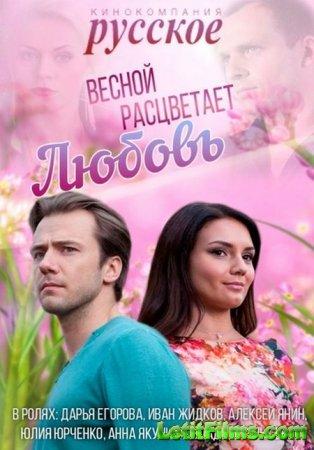 Скачать сериал Весной расцветает любовь (2015)