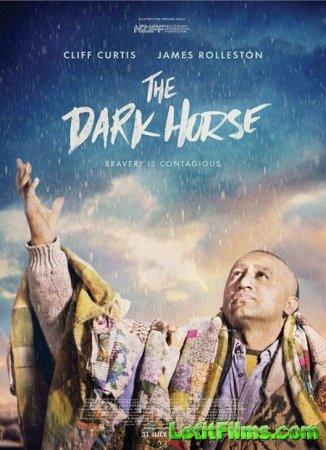 Скачать фильм Тёмная лошадка / The Dark Horse (2015)