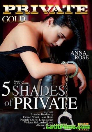 Скачать 5 оттенков личного / 5 Shades Of Private (2015)
