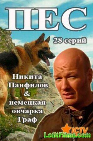 Скачать Пес (2015)