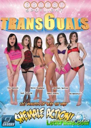 Скачать Trans6uals / Транс6оргия [2015] DVDRip