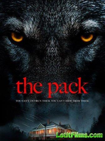 Скачать фильм Стая / The Pack (2015)