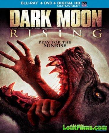 Скачать фильм Восход тёмной луны (2015)