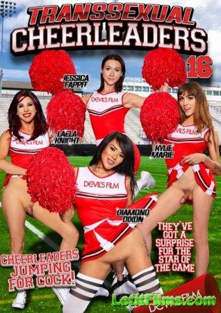 Скачать Транссексуальные болельщицы 16 / Transsexual Cheerleaders 16 [2015]