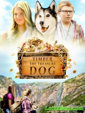 Скачать фильм Тимбер - говорящая собака / Timber the Treasure Dog (2016)