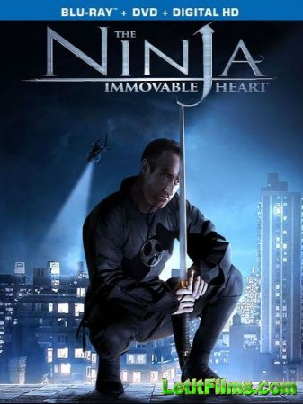 Скачать фильм Ниндзя: Шаг в неизвестность / Ninja Immovable Heart (2014)
