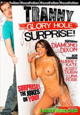 Скачать Tranny Glory Hole Surprise 1 / Транссексуальный Дырко Сюрприз 1 [20 ...