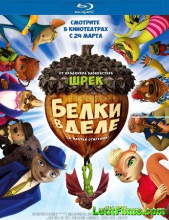 Скачать мультфильм Белки в деле / Get Squirrely (2015)