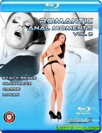 Скачать Romantic Anal Moments 2 / Романтические Анальные Моменты 2 [2013]