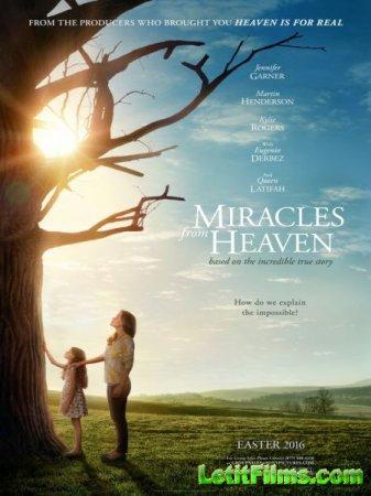 Скачать фильм Чудеса с небес / Miracles from Heaven (2016)