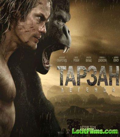 Скачать фильм Тарзан. Легенда / The Legend of Tarzan (2016)