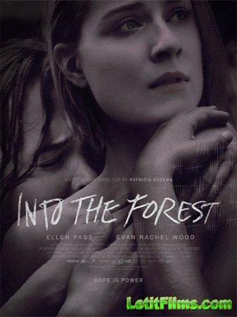 Скачать фильм В лесу / Into the Forest (2015)