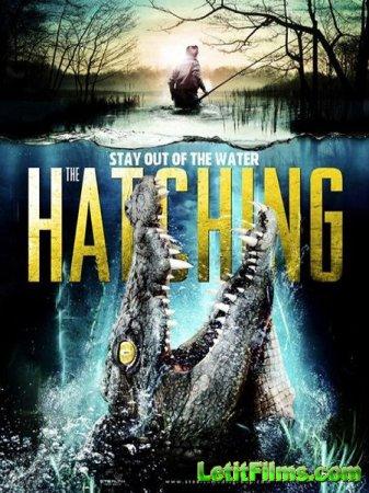 Скачать фильм Выводок / The Hatching (2016)