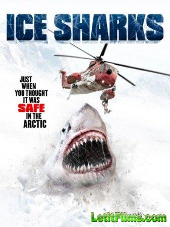 Скачать фильм Ледяные акулы / Ice Sharks (2016)