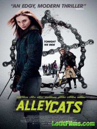 Скачать фильм Уличные коты / Alleycats (2016)