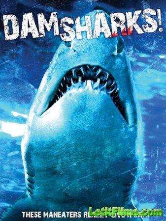 Скачать фильм Акульи плотины / Dam Sharks (2016)