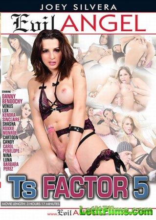 Скачать TS Factor 5 / Транс-Фактор 5 [2016]